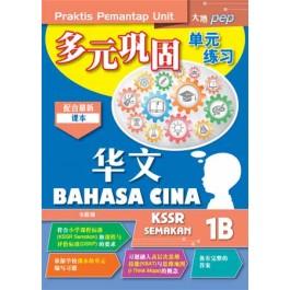 一年级 B 多元巩固单元练习 华文