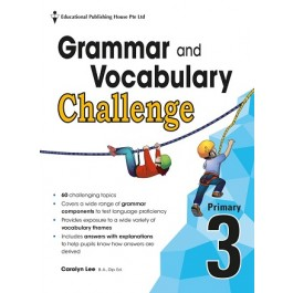 Primary 3 Grammar And Vocabulary Challenge