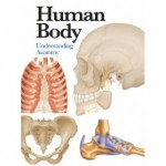 PE-MINI ENCYCLOPEDIA:HUMAN BODY