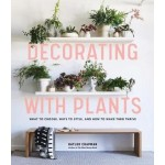 DECORATING WITH PLANTS: WHAT TO CHOOSE,