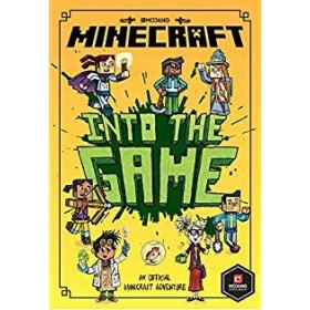 MINECRAFT INTO GAME