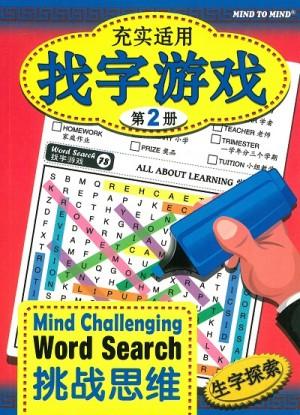 充实适用 找字游戏:挑战思维 生字探索(第2册)