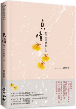 貞晴:痞子蔡的情傷小說